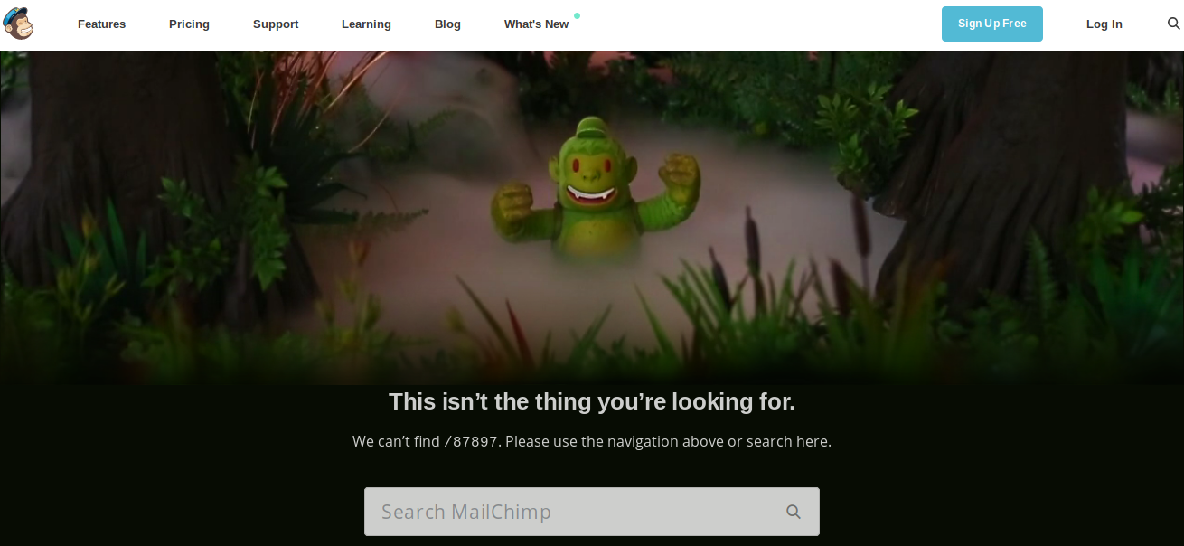 404 page as search option